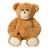 Sammy-the-bear-frontal
