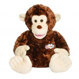 Parker-the-monkey-frontal