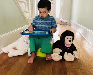Potty Training and help with Bluebee Pals