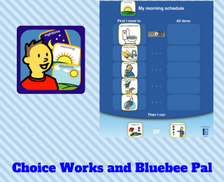 Choice Works App with Bluebee Pal