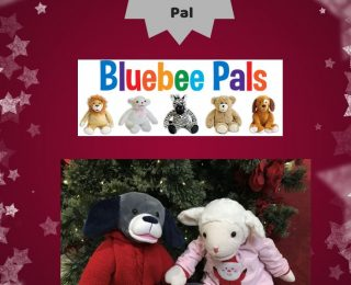 Holiday Apps for Bluebee Pal